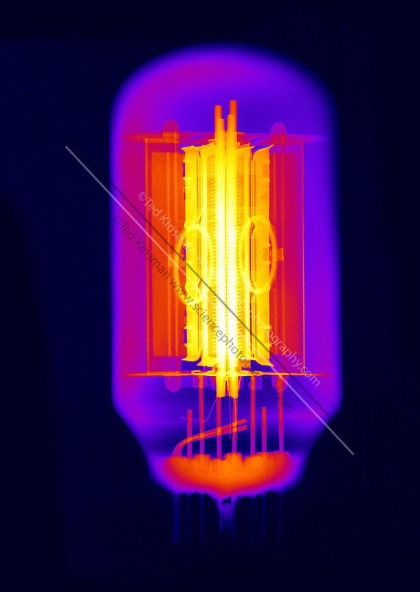 An X-ray of a vacuum tube.  Tubes were once commonly used in electronic devices to amplify a signal.