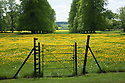 Gate to field of buttercups and avenue of trees, Rousham House and Garden.