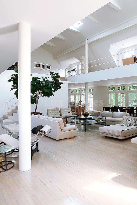 luxury contemporary living room