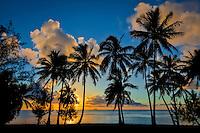 Sunset at Amuri Beach, with a silhouette of palm trees framing a Dawn Treader in the distance, Amuri Beach, Aitutaki Island, Cook Islands.