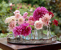 Simple little glass bottles have been used as vases in which to display this array of beautiful pink roses and dahlias