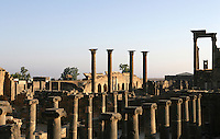 Ionic columns, Roman baths, 3rd century AD, Bosra, Syria Picture by Manuel Cohen