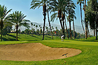 Male Golfer, Fixing Divot,  Golf Course Green, Red Flag, Flagstick, rolling fairways, Palm Trees,  beautiful, greens, natural settings, grass, roughs, Sand Trap, Bunker, hazard, flags, pins,