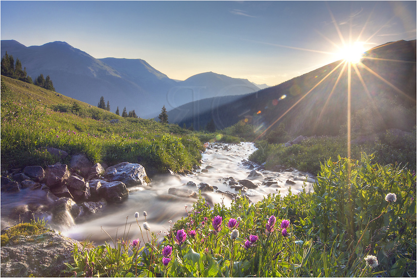 A cold fed stream runs off of Vasquez Ridge in Butler Gulch. The sun was just breaking the mountainside, finally warming up the valley that was flush with colorful Colorado wildflowers. This Colorado picture was captured early on a late July morning near Empire, Colorado, along the beginning of Berthoud Pass.
