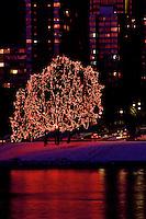 Tree of Lights at Christmas along Beach Avenue, at English Bay, Vancouver, BC.
