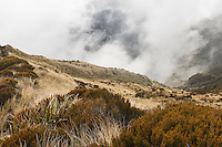 Swirling clouds in mountains near Mt. Brown Hut, West Coast, South Westland, New Zealand