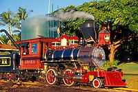 Sugarcane Train Ride in Lahaina