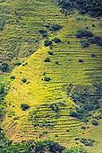 Col d'Amieu, anciennes tarodières