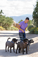 man getting tangled up in three leashes of dogs on a walk in Santa Fe, New Mexico