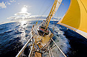 Sailing in the Southern Ocean