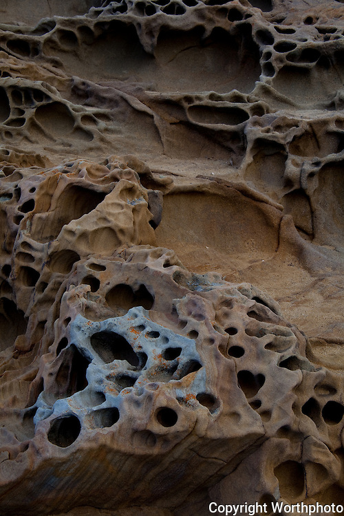 Tafoni: holes, caves, etched in the sandstone coast.  Some no more than an inch, maybe less, but their erratic, random appearance leads the mind's eye to create gaping mouths and vacant eyes.  Or not.