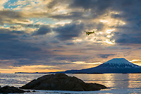 Spotter airplane for the 2006 Herring Sac Roe fishery approaches landing at the sitka airport. Mount Edegcumbe at sunset, Sitka sound, southeast, Alaska.