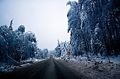 01.2010 Poland<br /> Road from Niegowa to Myszkow.<br /> Three atmospheric forces: rain, snow and frost have changed into an ecological disaster the Myszkowski district in the Czestochowskie province,<br /> located 230 kilometers south of Warsaw. Almost 95% of all trees are down.Thousands of homes are left without electricity.<br /> Photo: Adam Lach / Napo Images for Newsweek Polska<br /> <br /> Zamarzniety krzyz na drodze w pow.myszkowskim.<br /> Wstepnie &quot;tylko&quot; 95% scietych drzew w dwoch powiatach. 0.5 miliona metrow szesciennych zniszczonych lasow..Tysiace gospodarstw bez pradu. Wszyscy maja swiadomosc, ze na kumulacje trzech niekorzystnych .zjawisk atmosferycznych rady nie ma.Trzy zjawiska kt&oacute;re zamienily jeden z obszarow Polski w istna katastrofe ekologiczna: deszcz, snieg i szadz.<br /> Fot: Adam Lach / Napo Images dla Newsweek Polska