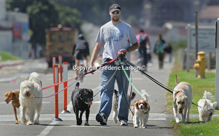 """Well if you don't know how to do, Dave Foote will show you how to walk the dog. """" Just a Walking the Dog"""" a oldie pop song which how is my own personal """"mind worm"""" of the day, firmly planted in my head...Fleet a Foote on the Presido flats in San Francisco, California."""