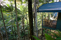 Silky Oaks Lodge in the treetops of Daintree Rainforest, Queensland, Australia