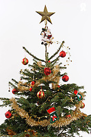 Decorated Christmas tree on white background (Licence this image exclusively with Getty: http://www.gettyimages.com/detail/89955784 )