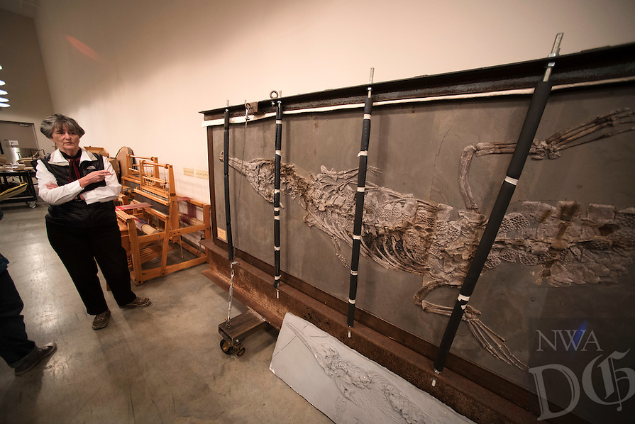 Northwest Arkansas Democrat Gazette/SPENCER TIREY <br /> Nancy McCartney, curator of zoology at the University of Arkansas talks about a large fossil stored at the archeology departments archive.