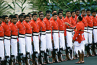 Fijian soldiers standing to attention during a ceremonial parade.