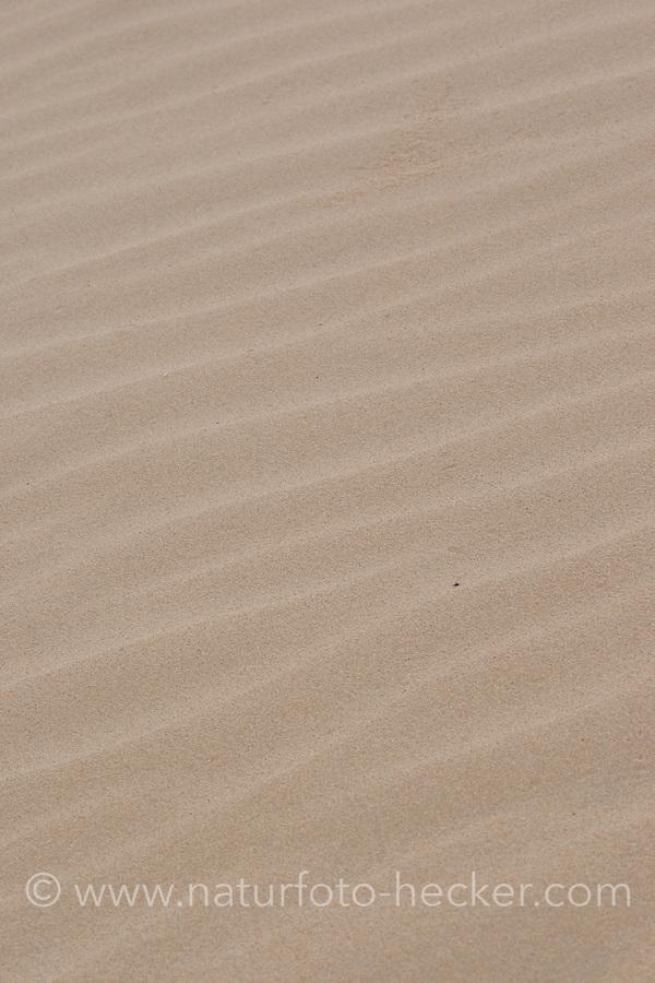 Sand, Strukturen auf Sandboden, wellenförmige Strukturen durch Wind, sandig