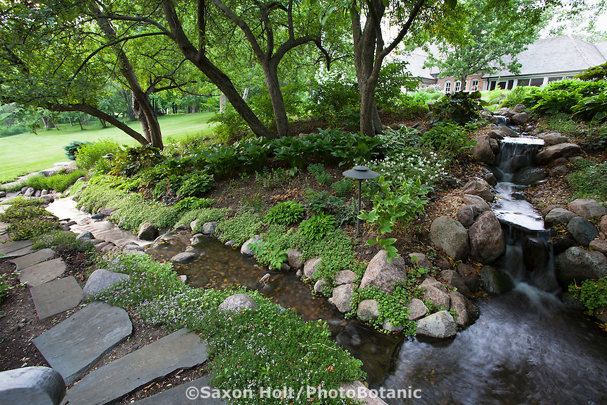 Stepping stone path by waterfall and stream through shady backyard garden under trees