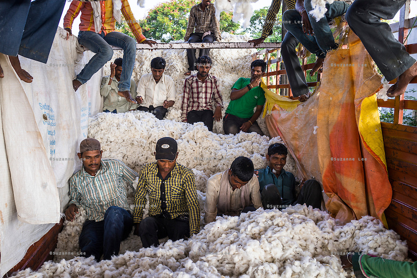 Workers unload raw Fairtrade cotton from a truck at a ginning factory that is contracted by Pratibha in Karhi, Khargone, Madhya Pradesh, India on 12 November 2014. Photo by Suzanne Lee for Fairtrade