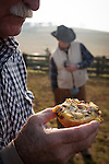 Breakfast at the calf marking at the Wooster Ranch, Red Barn, Calaveras County, Calif.