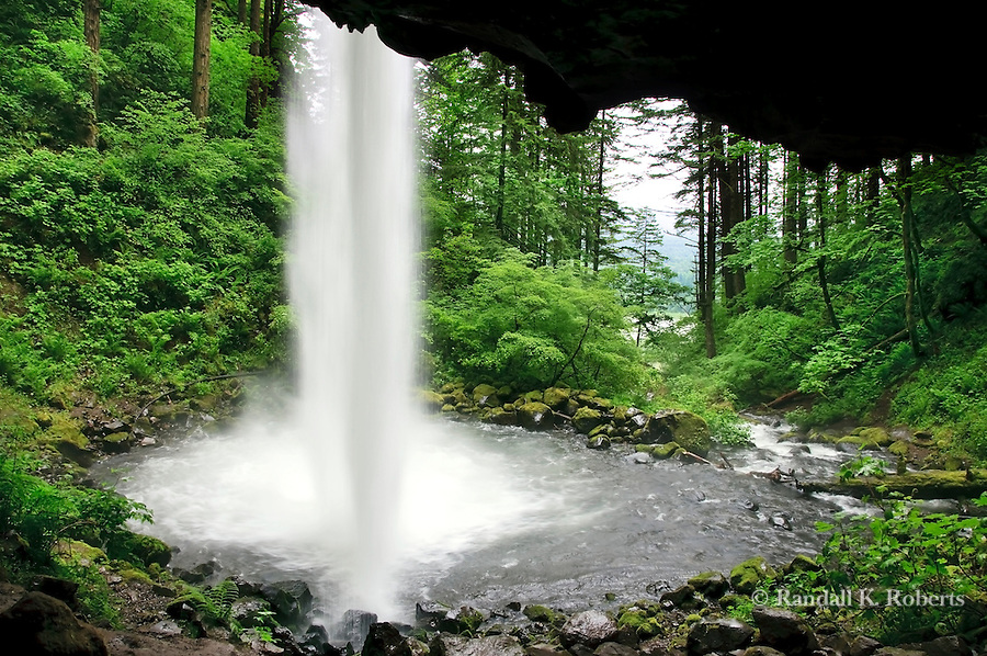 Pony Tail Falls, plunges into Horsetail Creek, Columbia River National Scenic Area, Columbia Gorge, Oregon