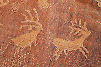 Petroglyphs from the Legend Rock Archeological Site in the Bighorn Basin