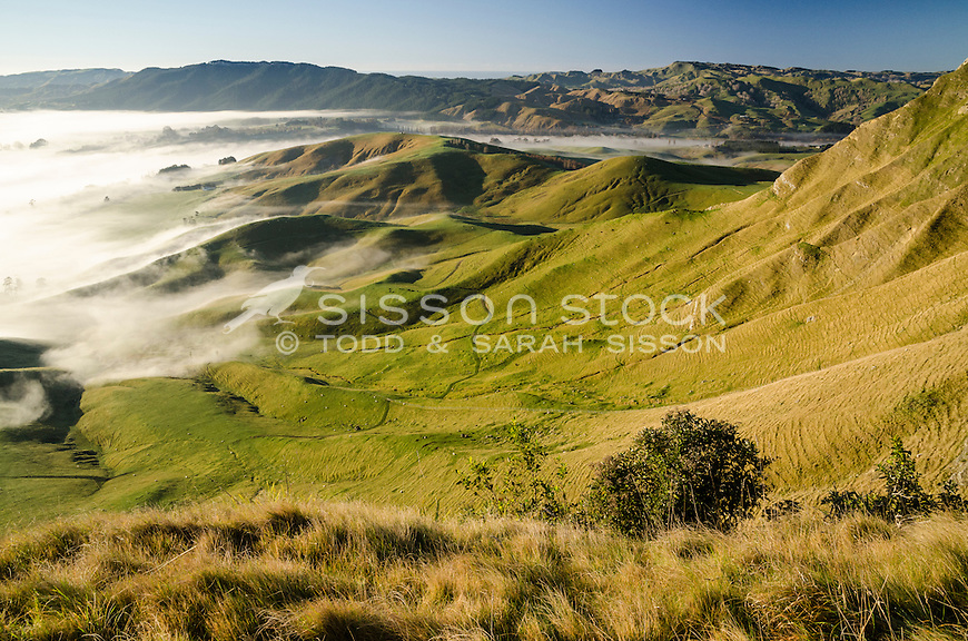 Receding fog on rolling farmland. From Te Mata Peak, Havelock North. Hawkes Bay North Island New Zealand.