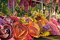 © David Zanzinger. Floats for the New Year's Day Tournament of Roses Parade evolved from flower-decorated horse carriages into floats. The floats are required to be covered with plant material, living or dead. Visit http://david-zanzinger.artistwebsites.com/ for galleries
