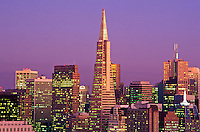 USA, California, San Francisco. View of Skyline with Trans America Building