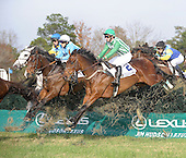 The Colonial Cup - 11/21/09