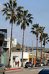 Abbot Kinney Blvd. in Venice