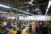 Dhaka 13-16 May 2013 Bangladesh<br /><br />(Photo by Filip Cwik / Napo Images)<br /><br />Dhaka 13-16 maj 2013 Bangladesz<br />Fabryka RMM KNIT CLOTHING <br />(fot. Filip Cwik / Napo Images)