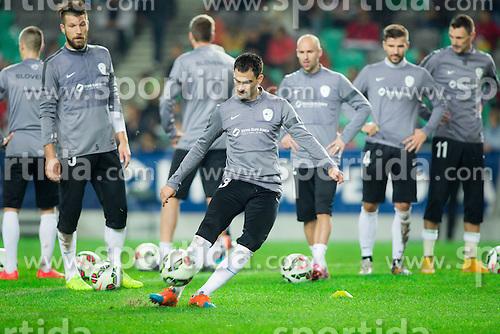 Bostjan Cesar, Branko Ilic during practice session of Slovenian National football Team before EURO 2016 Qualification game against England, on November 11, 2014 in SRC Stozice, Ljubljana, Slovenia. Photo by Vid Ponikvar / Sportida