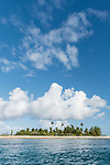 Toau Atoll, Tuamotu Archipelago, French Polynesia; a palm tree covered island at the edge of Fakatahuna Pass on Toau Atoll