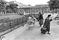 Paris, August 1977. Palais Royal. August in Paris is a noveable feast. While millions of residents are leaving for their favourite resorts, thousands of foreign tourists are flocking to the French Capital. Nevertheless, genuine Parisians, old and young alike, stay in Paris and mantain the tradition charm.