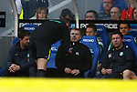 Fourth official Iain Brines has words with Neil Lennon