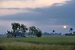 Sunrise in Khnach, a village in the Kampot region of Cambodia.