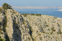 Adriatic coastline, Velebit Nature Park, Rewilding Europe rewilding area, Velebit  mountains, Croatia
