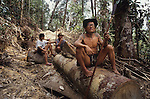 Dayak Penan Indigenous Logging Deforestation Sarawak