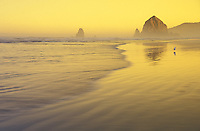 Haystack Rock at sunrise, Cannon Beach, Oregon