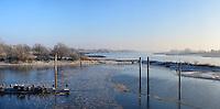 Elbe Landschaft: EUROPA, DEUTSCHLAND, HAMBURG, NIEDERSACHSEN, 22.01.2016: Elbe Landschaft bei Zollenspieker, Winterlich