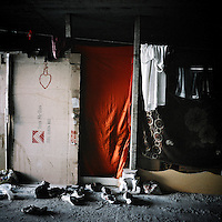 Red cloth used as a door in a shack used by Afghan refugees. Patras is home to about 3,000 illegal immigrants. Most of them are Afghans, although there are also some Iranians and Uzbeks. They stop in Patras to try and find passage to various European destinations by hiding in ships, containers and trucks parked in the port. If they are lucky they will make it to their destination. Many of them live in shacks made from cartons, plastic and wood they found on the beach. To shelter from the cold they also squat in abandoned buildings, living without water and electricity. The living conditions are inhumane and unhygienic.
