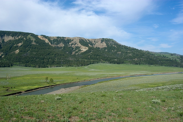 WY: Wyoming; Yellowstone National Park..Lamar Valley..Photo #: yellow1707.Photo copyright Lee Foster, 510/549-2202, lee@fostertravel.com, www.fostertravel.com..
