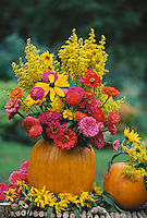 A cut pumpkin serves as a vase for cut fall flowers and goldenrod