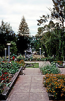 Philippines: Baguio--Rizal Park, looking to Burnham Park. Photo '82.