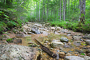 Pemigewasset Wilderness - Location of a spur line off the East Branch & Lincoln Railroad at North Fork Junction in Lincoln, New Hampshire USA. The railroad tracks traveled up this rocky brook bed. This was a logging railroad in operation from 1893 - 1948.