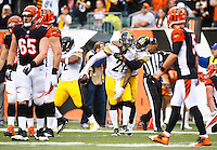 Robert Golden #21 of the Pittsburgh Steelers celebrates with teammate Brandon Boykin #25 of the Pittsburgh Steelers after catching an interception against the Cincinnati Bengals during the game at Paul Brown Stadium on December 12, 2015 in Cincinnati, Ohio. (Photo by Jared Wickerham/DKPittsburghSports)