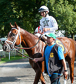 2013 FLAT RACING HORSE INDEX